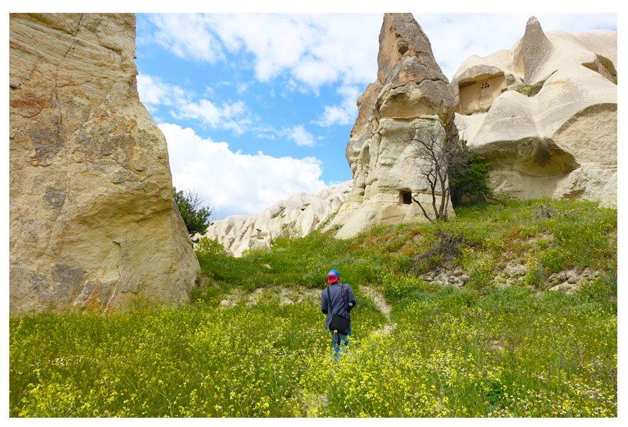 flowers in cappadocia turkey rock sites fairy chimneys
