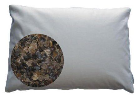 japanese buckwheat pillow kris aquino