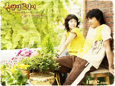 aldub-teleserye-primetime-teleserye-gma-network-korean-remake-alden-richards-maine-mendoza-lie-to-me-full-house-attic-cat-3
